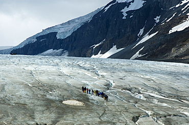 Canada, Alberta, Columbia Icefield, Group of tourists walking up the Athabasca Glacier.