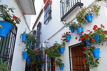 Spain, Andalucia, Cordoba, Calle de las Floras .