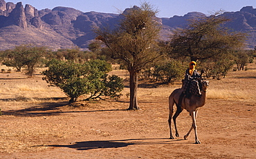 MALI  Sahel Desert Touareg man on camel passing the Dyounde Mountains.
