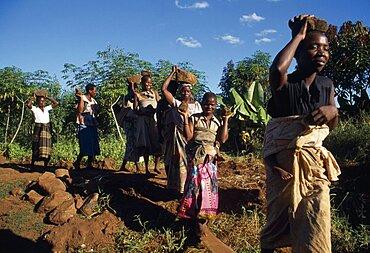 MALAWI  Mulanje Bwanali village development committee road building project.  Women building access road.