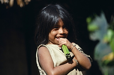 COLUMBIA  Kogi  Portrait of young Kogi Indian child chewing green canes