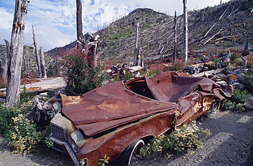 USA Washington Skamania Mount St Helens National Volcanic Monument. Crushed car and flattened bare trees in the aftermath of the 1980 eruption