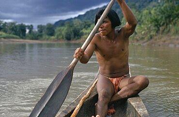 COLOMBIA Choco Embera Indigenous People Embera man using single oar to steer wooden dug out canoe along rio Baudo. Pacific coastal region boat piragua tribe