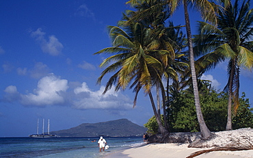 Sandy Island, Tourists on sandy beach beneath palm trees with sailing ship moored in water beyond, Carriacou Island, Grenadines