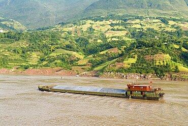 Barge on the Yangtze River near Wushan passing rich farmland, Wushan, Chongqing, China