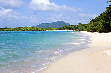 The calm clear blue water breaking on Paradise Beach in LEsterre Bay with High North mountain in the distance and people walking along the sandy shore, Grenada, West Indies, Caribbean, Central America