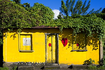 An overgrown yellow single storey building with the red heart symbol of the NDC National Democrtaic Congress political party painted on its wall, Caribbean