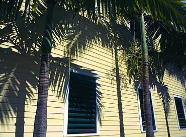 USA, Florida, Key West, Detail of calpperboard building with palm trees and shadows