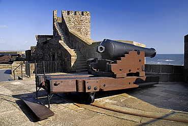 Ireland, County Antrim, Carrickfergus, Castle, A cannon on the castle ramparts