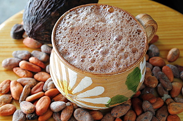Chocolate caliente hot chocolate in painted cup with cocoa beans and pod, Oaxaca, Mexico