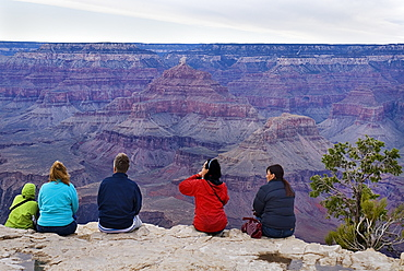 Group of people observing the South Rim viewed from Yavapai Point, Grand Canyon , Arizona, United States of America