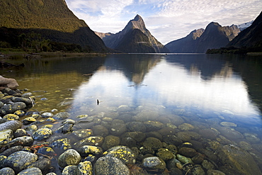 Milford Sound in Fiordland National Park, UNESCO World Heritage Site, South Island, New Zealand, Pacific