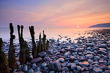Weathered groynes on Bossington Beach, near to Porlock Weir, Exmoor, Somerset, England, United Kingdom, Europe