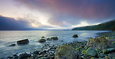 Clearing sea fog tinged pink by the colours of dawn, Clovelly, Devon, England, United Kingdom, Europe