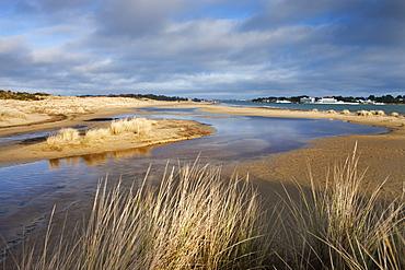 Shell Bay looking towards Sandbanks, Studland, Jurassic Coast, UNESCO World Heritage Site, Dorset, England, United Kingdom, Europe