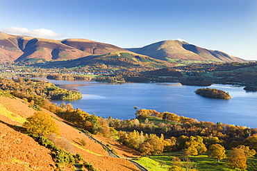 Derwent Water, Skiddaw and Blencathra from the slopes of Catbells, Lake District National Park, Cumbria, England, United Kingdom, Europe