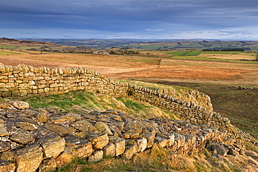 Hadrian's Wall, UNESCO World Heritage Site, on top of Steel Crags in Northumberland National Park, Northumberland, England, United Kingdom, Europe