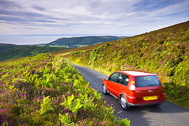 Car driving down Dunkery Hill on a small lane, Exmoor National Park, Somerset, England, United Kingdom, Europe