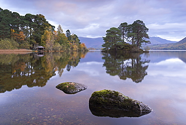 Otter Island near the southern shores of Derwent Water, Lake District National Park, Cumbria, England, United Kingdom, Europe