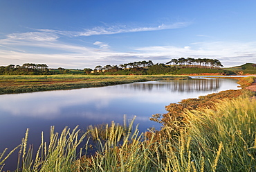Otter Estuary at Budleigh Salterton in summer, Devon, England, United Kingdom, Europe
