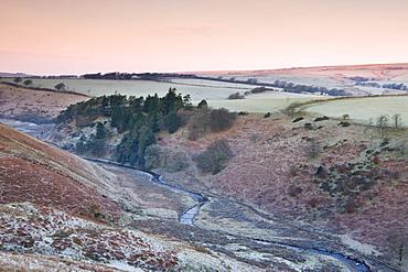 River Barle in the Cornham Brake valley on a frosty winter morning, Simonsbath, Exmoor National Park, Somerset, England, United Kingdom, Europe