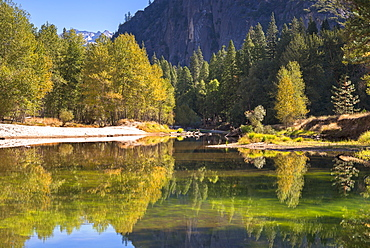Colourful autumn trees flank the River Merced in Yosemite Valley, UNESCO World Heritage Site, California, United States of America, North America