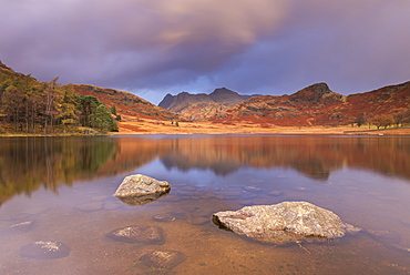 Sunrise over Blea Tarn and the Langdale Pikes in autumn, Lake District National Park, Cumbria, England, United Kingdom, Europe