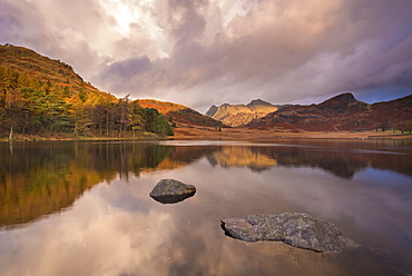 Dramatic sunrise light over Blea Tarn and the Langdale Pikes in autumn, Lake District National Park Cumbria, England, United Kingdom, Europe