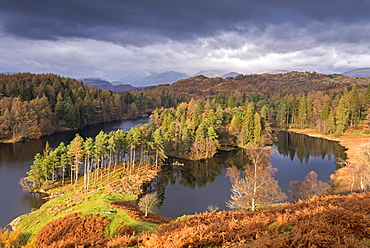 Picturesque Tarn Hows in winter, in the Lake District National Park, Cumbria, England, United Kingdom, Europe