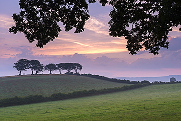 Rural countryside views at sunrise, Luccombe, Exmoor National Park, Somerset, England, United Kingdom, Europe