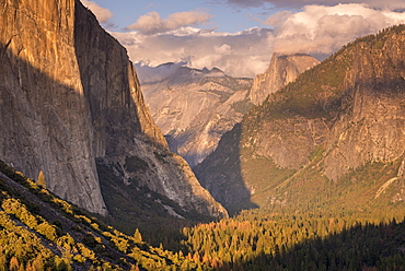 Yosemite Valley, with evening light bathing Half Dome and El Capitan, Yosemite National Park, UNESCO World Heritage Site, California, United States of America, North America