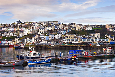 Boats and houses at Brixham harbour in South Devon, England, United Kingdom, Europe