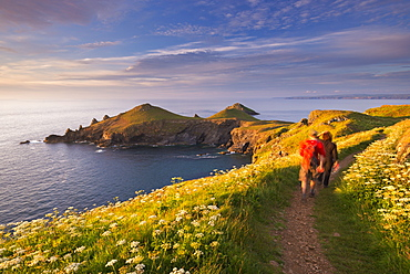 Walkers on the South West Coast Path on Pentire Head, overlooking The Rumps, Cornwall, England, United Kingdom, Europe