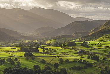 Early morning sunlight illuminates the rolling countryside near Keswick in the Lake District National Park, Cumbria, England, United Kingdom, Europe
