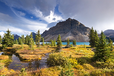 Winding stream leading through undergrowth to Bow Lake in the Canadian Rockies, Icefields Parkway, Alberta, Canada, North America