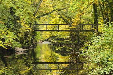 Footbridge spanning the River Teign near Fingle Bridge, Dartmoor, Devon, England, United Kingdom, Europe
