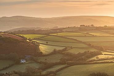 Farmhouse in idyllic rolling countryside at dawn, Dartmoor National Park, Devon, England, United Kingdom, Europe