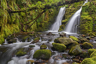 Double waterfall cascade at Venford Falls in Dartmoor National Park, Devon, England, United Kingdom, Europe