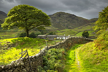 Idyllic farm and countryside view with dry stone wall in the Langdale Valley, Lake District National Park, UNESCO World Heritage Site, Cumbria, England, United Kingdom, Europe