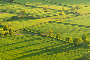 Patchwork fields in the Brecon Beacons National Park, Powys, Wales, United Kingdom, Europe