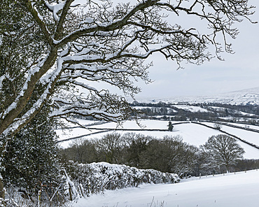 Snow covered Dartmoor countryside in winter near South Tawton, Devon, England, United Kingdom, Europe