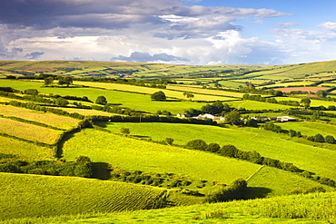 Rolling countryside near Kentisbury, Exmoor National Park, Devon, England, United Kingdom, Europe