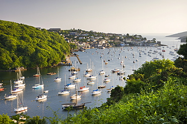 Pont Pill, Polruan and the Fowey Estuary from Hall Walk near Bodinnick, Cornwall, England, United Kingdom, Europe