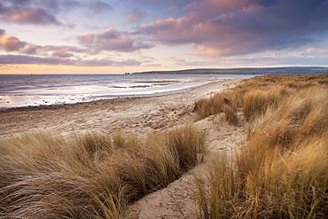 Windswept sand dunes on the beach in winter at Studland Bay, Dorset, England, United Kingdom, Europe