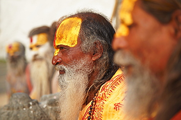 Sadhus (Holy men) at Pashupatinath Temple, Kathmandu, Nepal, Asia