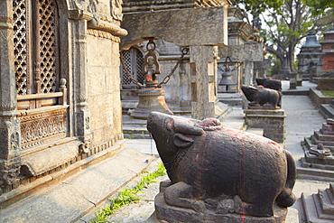 Shiva shrines at Pashupatinath Temple, UNESCO World Heritage Site, Kathmandu, Nepal, Asia