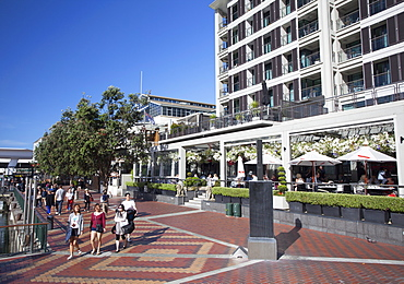 Bars and restaurants in Viaduct Harbour, Auckland, New Zealand, Pacific