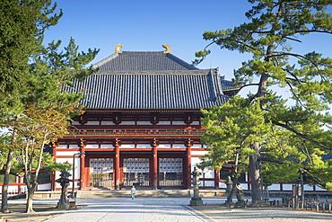 Man at Todaiji Temple, UNESCO World Heritage Site, Nara, Kansai, Japan, Asia
