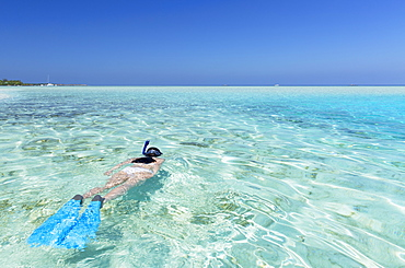 Woman snorkelling in lagoon, Rasdhoo Island, Northern Ari Atoll, Maldives, Indian Ocean, Asia