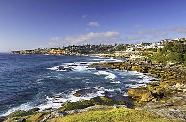 Coastline of Bondi to Bronte walk, Sydney, New South Wales, Australia, Pacific